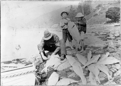 Port Waikato fishing