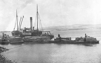 """SS's """"Arapawa"""", """"Tarawera"""", """"Ern"""" - Waikato Heads"""