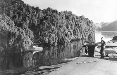 Rawhiti on the Waikato River
