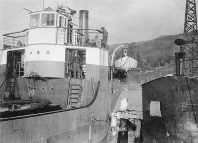 Holmglen at Port Waikato