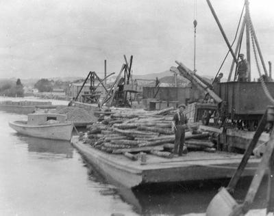 Loading timber onto barge - at Mercer ?