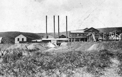 Rotowaro Mine from Awaroa Creek