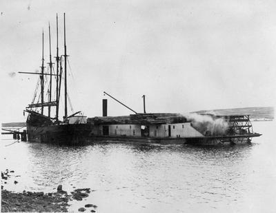 Rawhiti and Margaret W at Port Waikato