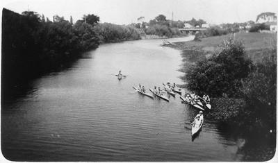 Rowers on the Waikato River - Taupiri race