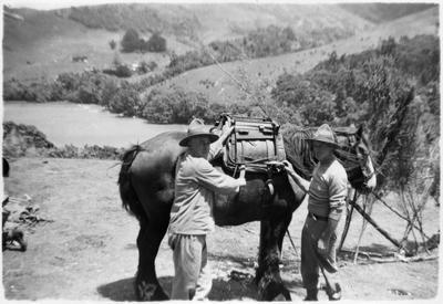 6th Hamilton company NMR Great Barrier Island 1942