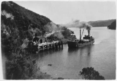 "M.V. ""Rangonui"" arriving Port Fitzroy at Great Barrier Island"