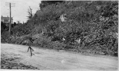Site of fire engine crash/accident c. 1920s