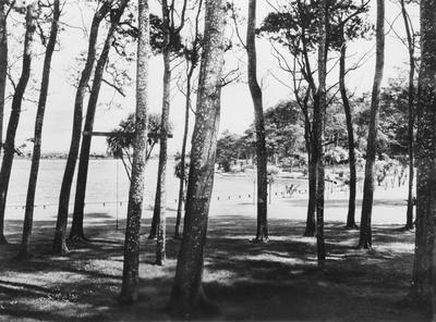 The Lake, Hamilton
