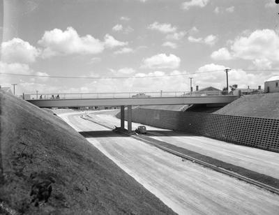 Palmerston Street overpass and Cobham Drive