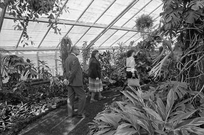 Hamilton Gardens' display glasshouse