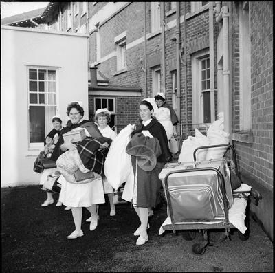 Nurses at Waikato Hospital