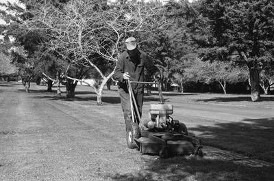 Mowing grass at the Hamilton East Cemetery near Hamilton Gardens
