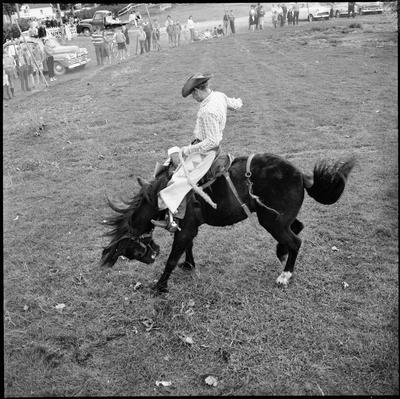 Cowboy on bucking horse at a rodeo