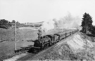 Taneatua Express
