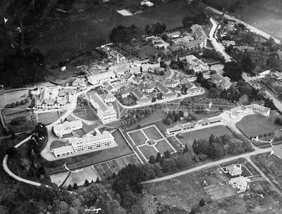 Aerial photo of Waikato hospital