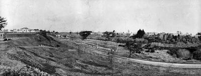 Flax drying in Hamilton East