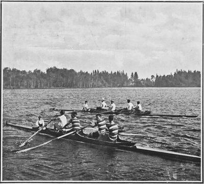 Hamilton Lake (Rotoroa)