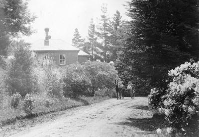 Lake House, horse and trap at Hamilton Lake