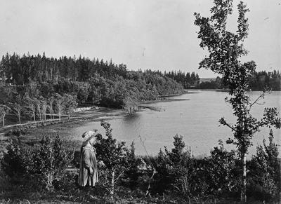 South End of Hamilton Lake
