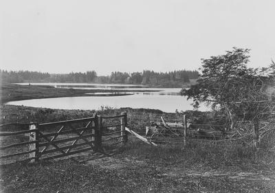 Hamilton Lake viewed from the North