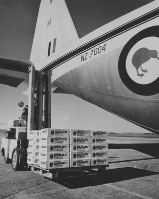 Cases of Waikato Strong Ale being loaded onto an aircraft