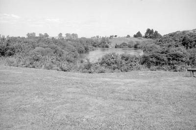 Hamilton Gardens 1980