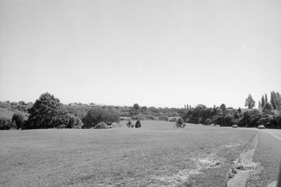 Hamilton Gardens and Cobham Drive