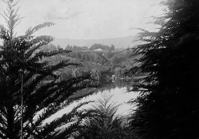 Waikato River, Cambridge