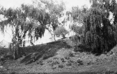 Hamilton river path