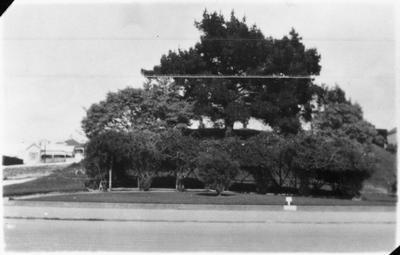 Garden Place - Hamilton
