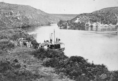 Waikato River near Hamilton