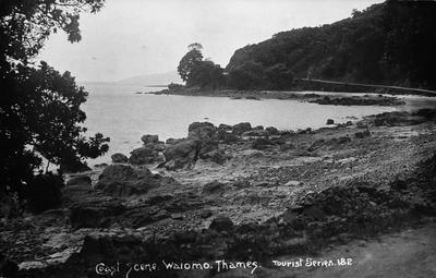 Coast scene, Waiomo, Thames