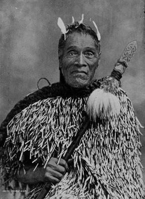 Mohi, Maori Chief