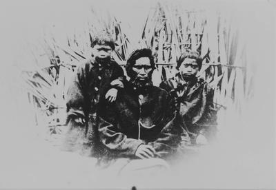 Wiremu Tamihana and sons