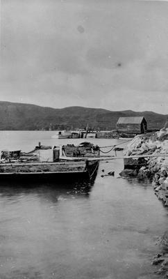 Ferry at Raglan
