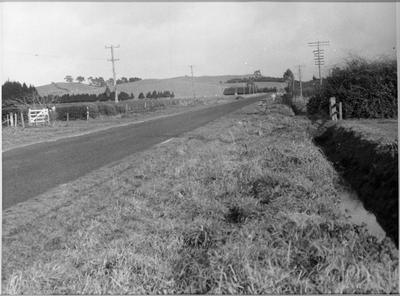 Whatawhata Road, Dinsdale