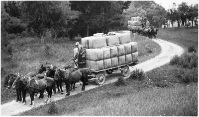 Gosling & Sons Transport, Kekerunga Valley (Mount Napoleon) Marlborough