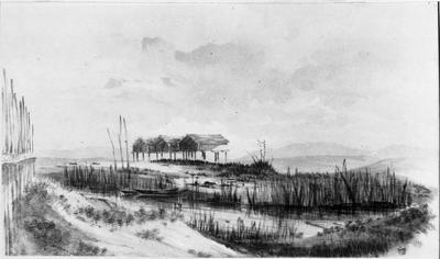 Whangape Lake