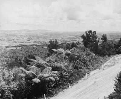 View of Waikato from Mountain road