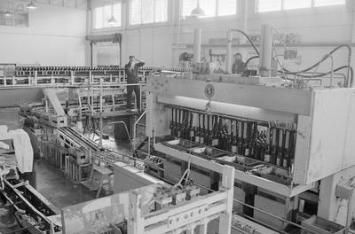 Inside Lion Breweries factory