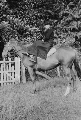 M Main on horseback