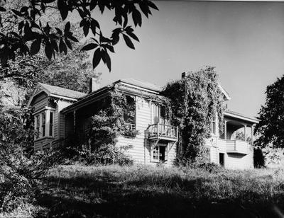 House of Dr Wilson, Collingwood Street, Hamilton