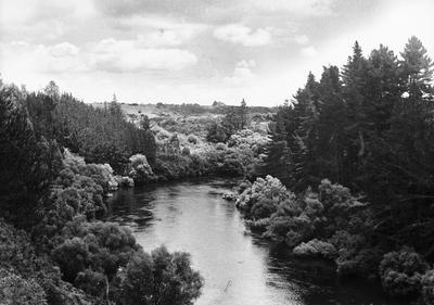 Waikato River near Cambridge