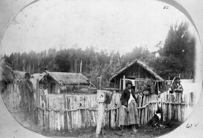 Te Kumi native settlement