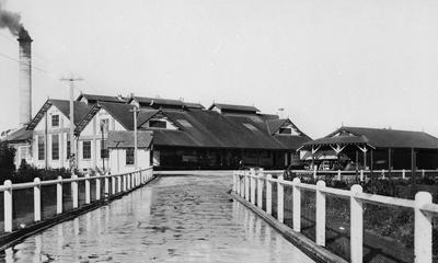 Matangi Milk Powder Factory