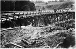 Bridge - Ellis and Burnand tramline Ongarue or Manunui
