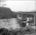 Speed boats under Cobham Bridge