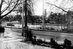 Hillsborough Terrace c. 1960