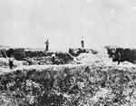 The Maori entrenchments at Rangiriri - NZ history campaigns
