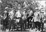 Men in orchard